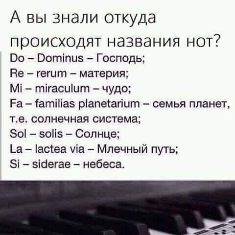 FB_IMG_1555481318720