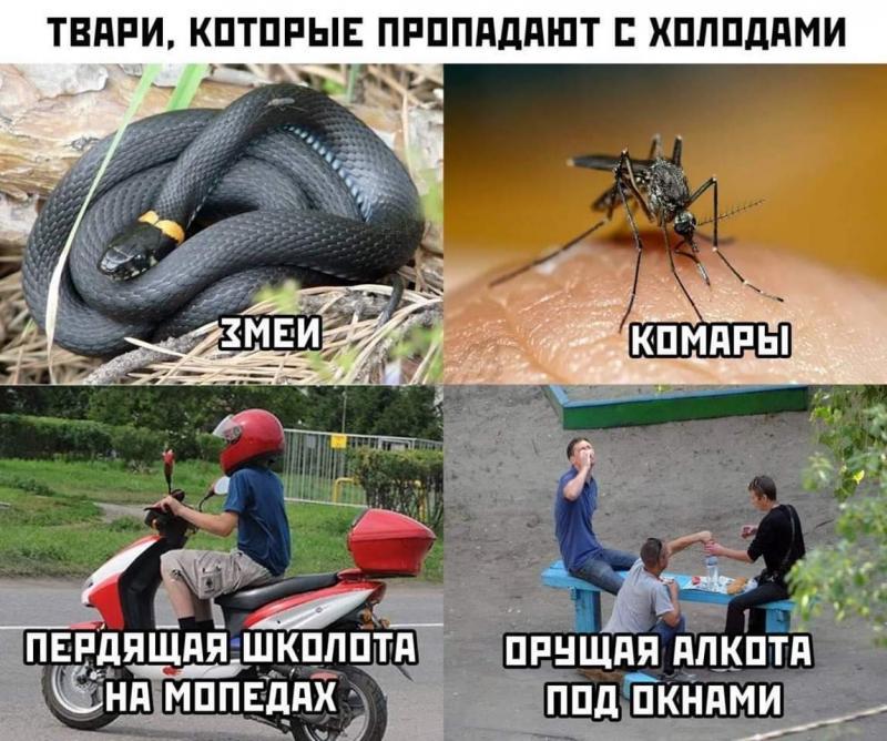 FB_IMG_1569692983482