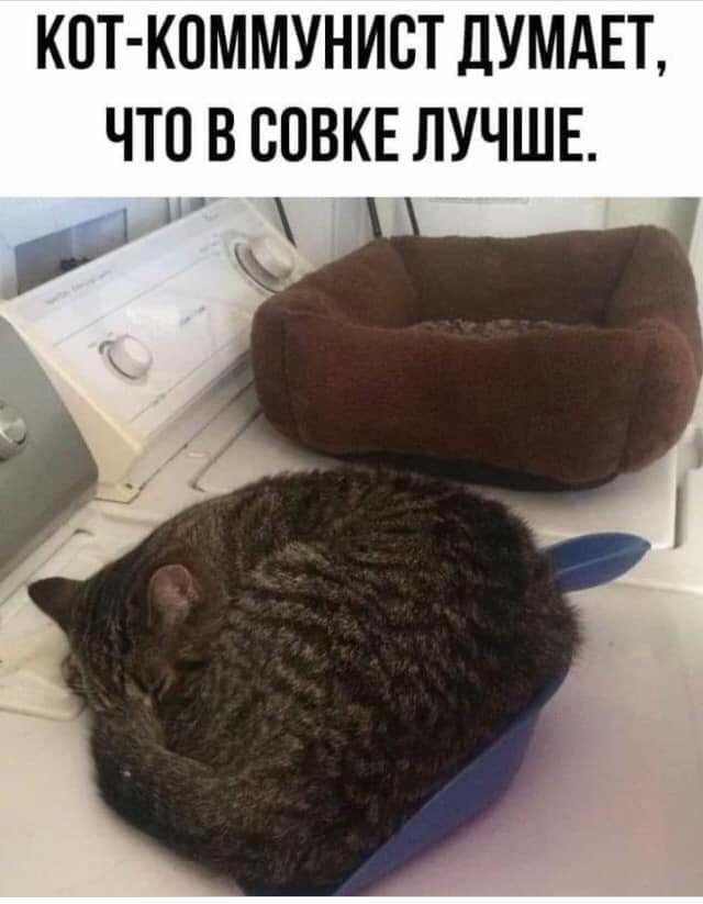 IMG_20191211_071910_262