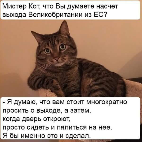 FB_IMG_1468232778025