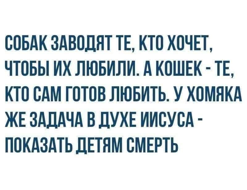 FB_IMG_1609710699151