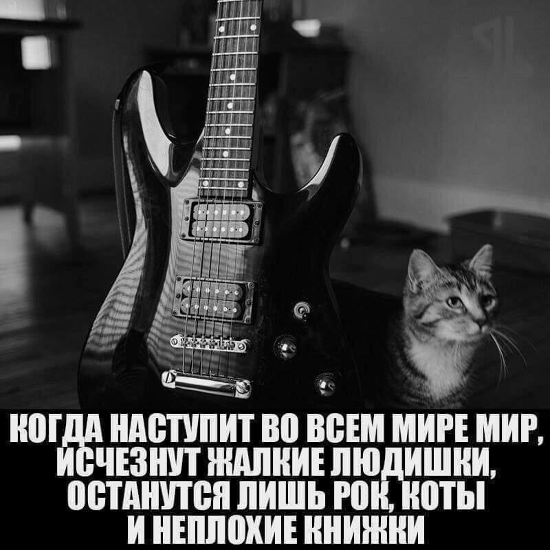 FB_IMG_1576704285592